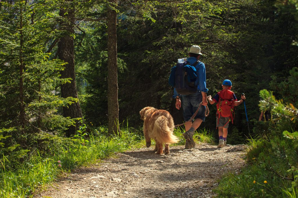 Family and dog walking on a nature trail